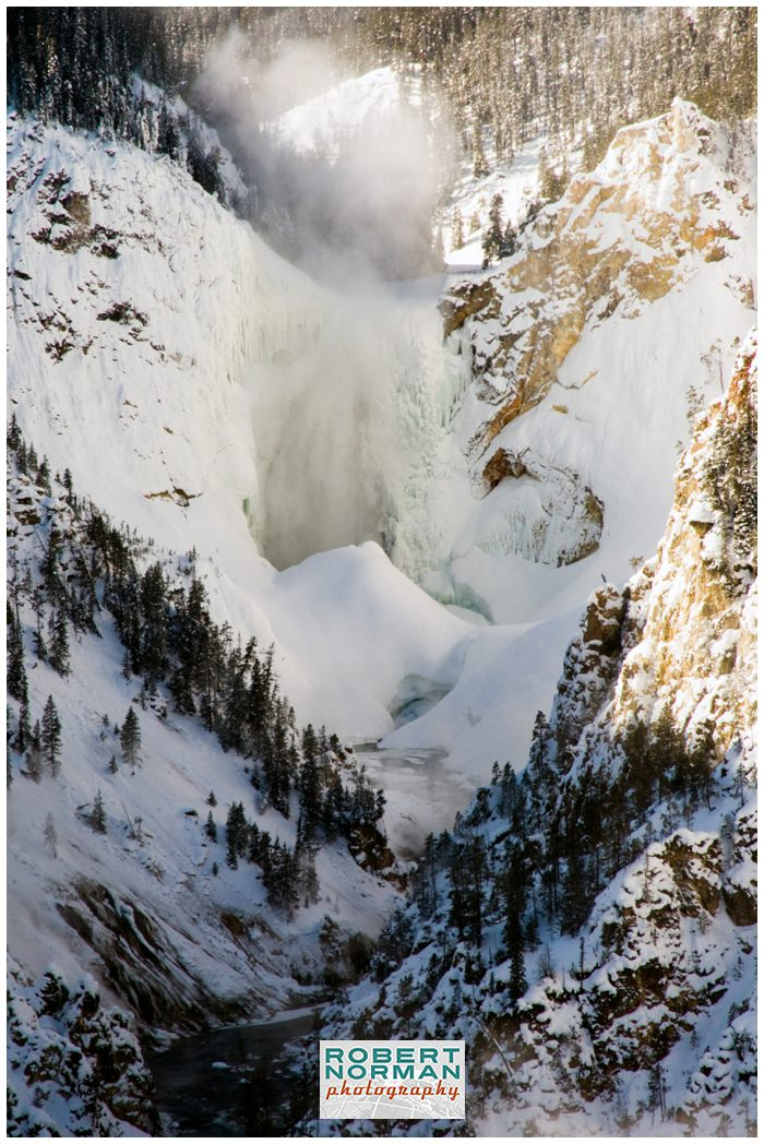 yellowstone-national-park-in-winter-DLWS-Moose-Peterson-Joe-McNally-snow