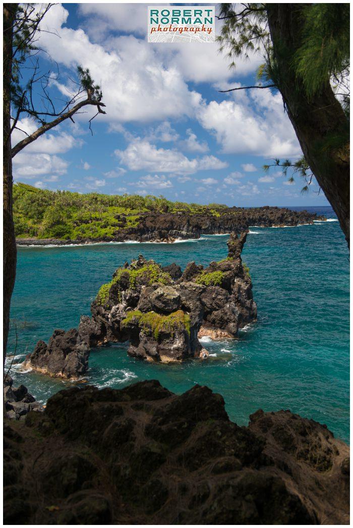 Wai'anapanapa-State-Park-Black-Sand-Beach