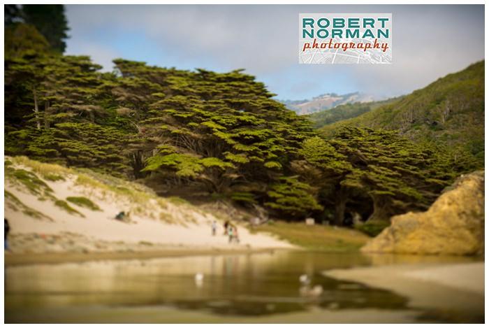 pfeiffer-beach-state-park-big-sur-california