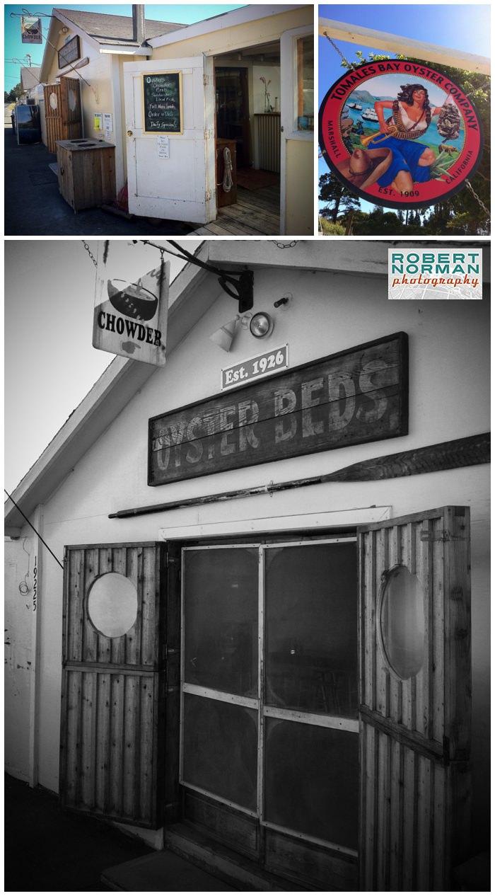 Tomales-bay-oyster-company-california-CA